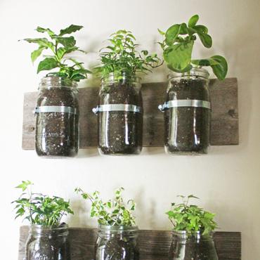 ジャーを使った壁掛け観葉植物
