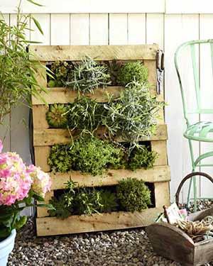 Garten: Palette